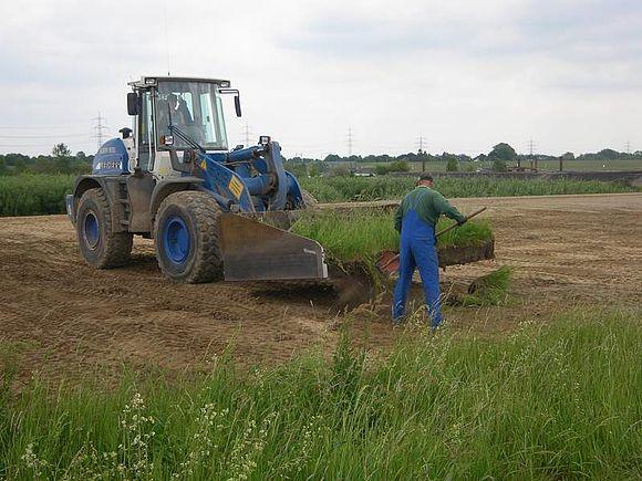 Sodenverpflanzung