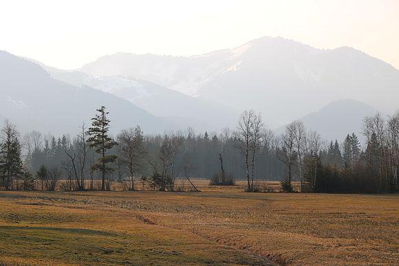 Streuwiesen südlich des Blinklingmooses